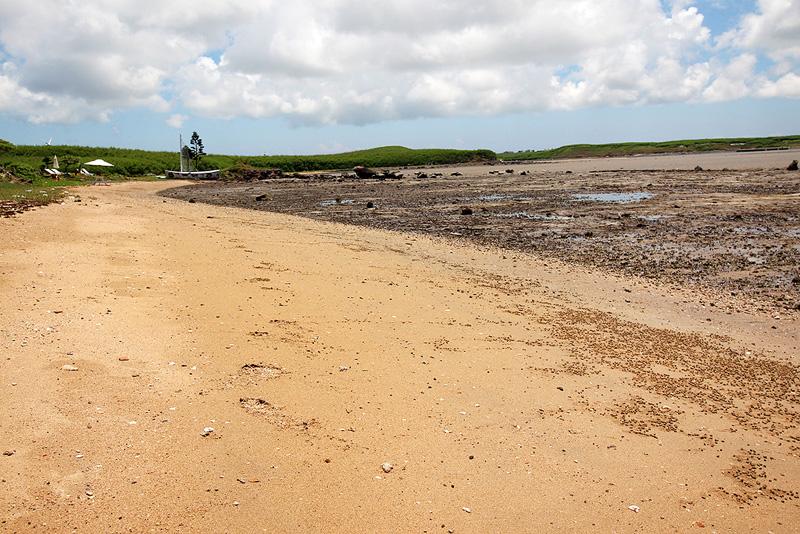 城前沙灘的砂質是屬於貝殼砂質